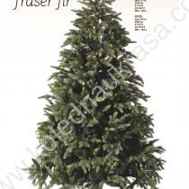 Елха Fraser fir